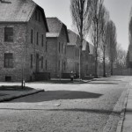Rows of barracks