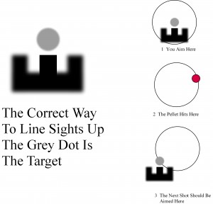 using sights correctly to win at a funfair rifle range